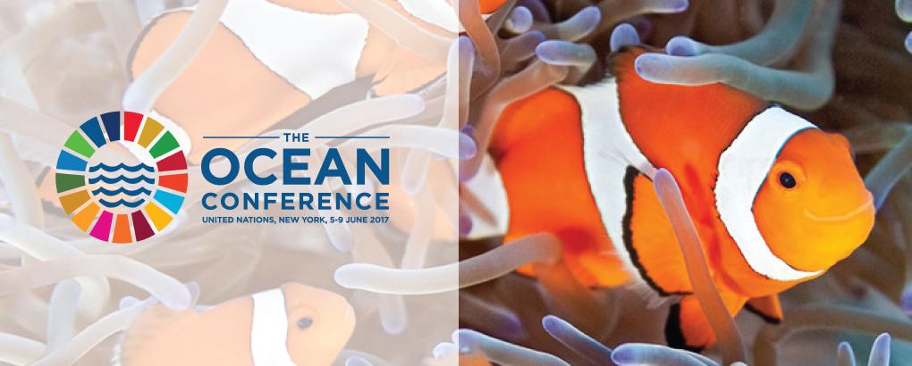 Conferenza Mondiale sugli Oceani
