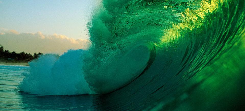 allevamenti negli oceani
