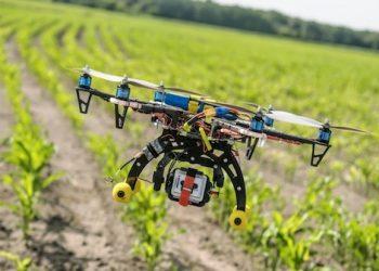 innovazione agricola