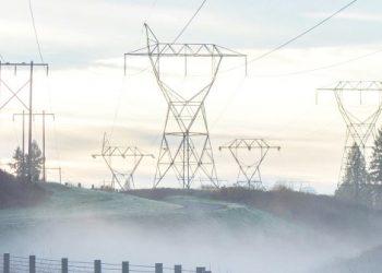 rete mondiale per l'energia rinnovabile