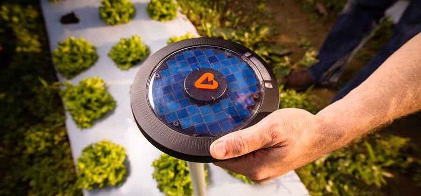 Agricoltura sostenibile: un aiuto alle colture dal sensore Pulsepod
