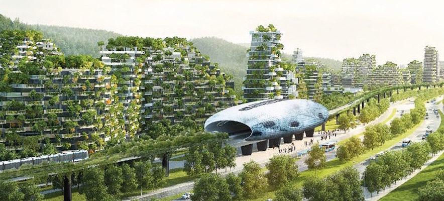 Dalla sostenibilità alla rigenerazione: il salto da fare per preservare il nostro futuro