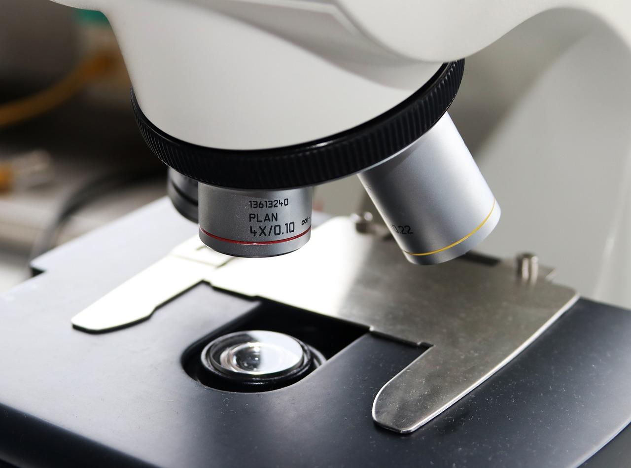 fotosintesi in laborotorio