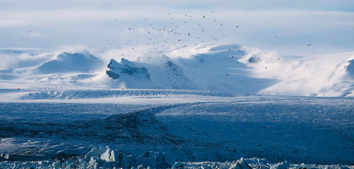 migrazioni e cambiamenti climatici