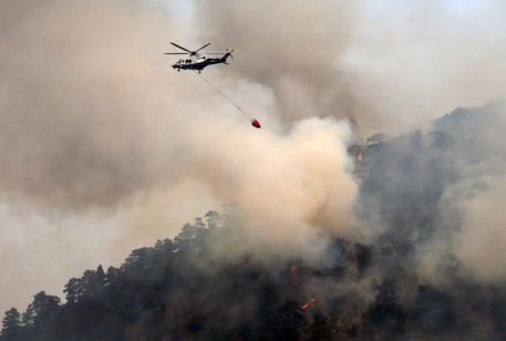 cambiamenti climatici meteorologici incendio Cipro (foto:http://www.ansa.it/)