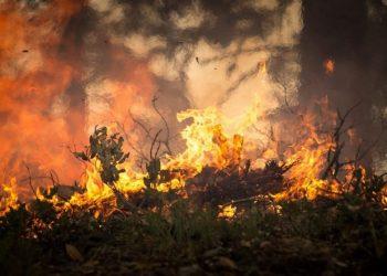 cambiamenti climatici e meteorologici: incendio (foto: https://pixabay.com/)