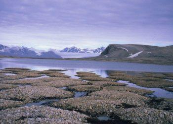 permafrost features on Kvadehukslette