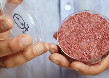 carne pulita