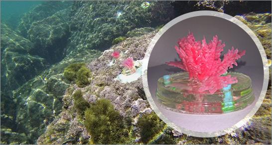 alghe artificiali