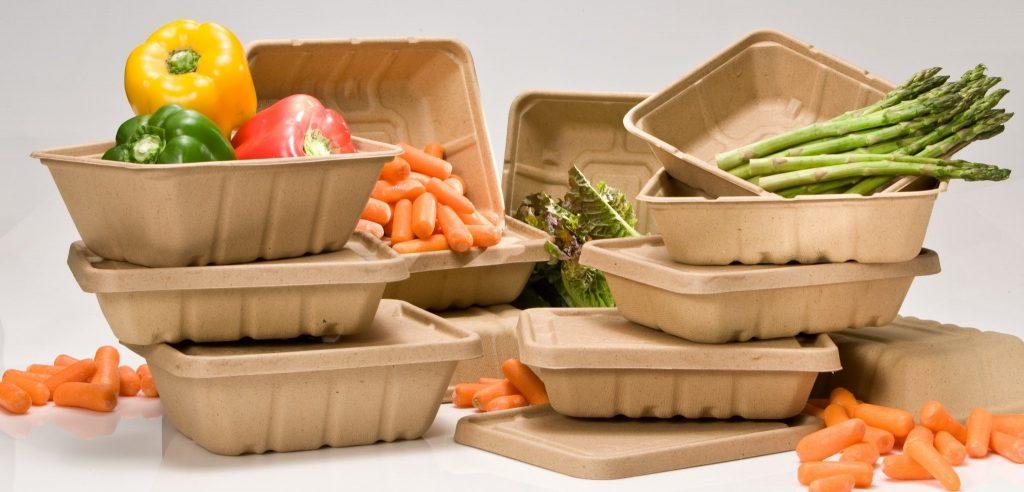 Protezione sostenibile degli alimenti: il packaging naturale che difende i cibi dai batteri