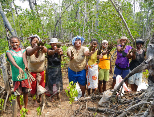 donne e cambiamenti climatici: donne in Africa (foto: https://www.treesisters.org/)