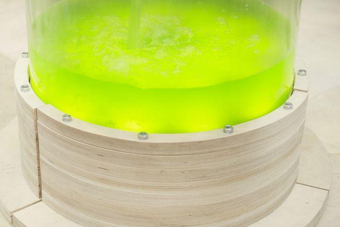 struttura produzione alghe