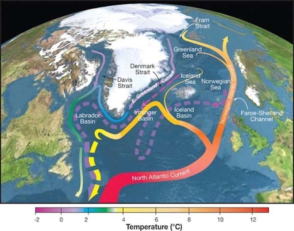 """Gli scienziati sono ormai da diverso tempo a conoscenza del fenomeno chiamato """"warming hole"""" un termine che potremmo tradurre con """"il buco del riscaldamento"""" ovvero un'area dell'Oceano Atlantico Settentrionale che risulterebbe immune al surriscaldamentdo delle acque oceaniche terrestri. La formazione di quest'area sembrerebbe associabile a un rallentamento della cicrolazione delle correnti oceaniche nella pare più meridionale dell'Atlantico, lì dove avvengono gli """"spostamenti chiave"""" della circolazione oceanica globale. Correnti oceaniche, nuovi studio all'orizzonte! Di una ricerca condotta da un team di scienziati dell'università di Yale e dalla University of Southhampton. Il team di ricerca avrebbe infatti scoperto che la perdita del ghiaccio artico causata dal riscalamento globale, potrebbe influire negativamente sul più grande sistema di circolazione delle correnti oceaniche dell'intero pianeta. Perché sono importanti le correnti ocaniche? Ci sono tantissimi motivi per cui possiamo considerare importanti le correnti oceaniche. Tra questi motivi ricordiamo i più importnati e i più curiosi. Sono importnati perché posono aiutarci a ridurre i costi di spedizione, in quanto viaggiare senza averle contro riduce i costi del carburante. Nell'era della vela, alimentata dal vento, la conoscenza delle correnti oceaniche era ancora più essenziale. Le correnti oceaniche sono molto importanti anche nella diffusione di molte forme di vita. Un esempio? Il ciclo di vita dell'anguilla europea. Queste correnti influiscono anche sulle temperature in tutto il mondo. Ad esempio, la corrente oceanica che porta acqua calda dall Atlantico settentrionale all'Europa nordoccidentale blocca cumulativamente e lentamente i ghiacci lungo le rive del mare, impedendo anche alle navi di entrare ed uscire dalle vie navigabili interne e dai porti marittimi, per cui le correnti oceaniche svolgono un ruolo decisivo nell'influenzare i climi delle regioni attraverso le quali scorrono. Le correnti d'acq"""