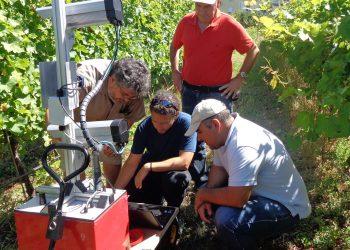 Innovazione in viticoltura: è arrivato un robot fra i filari europei
