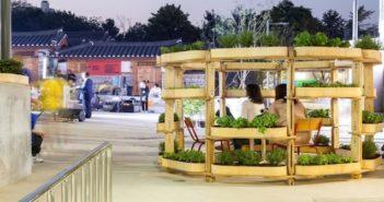 giardinaggio urbano