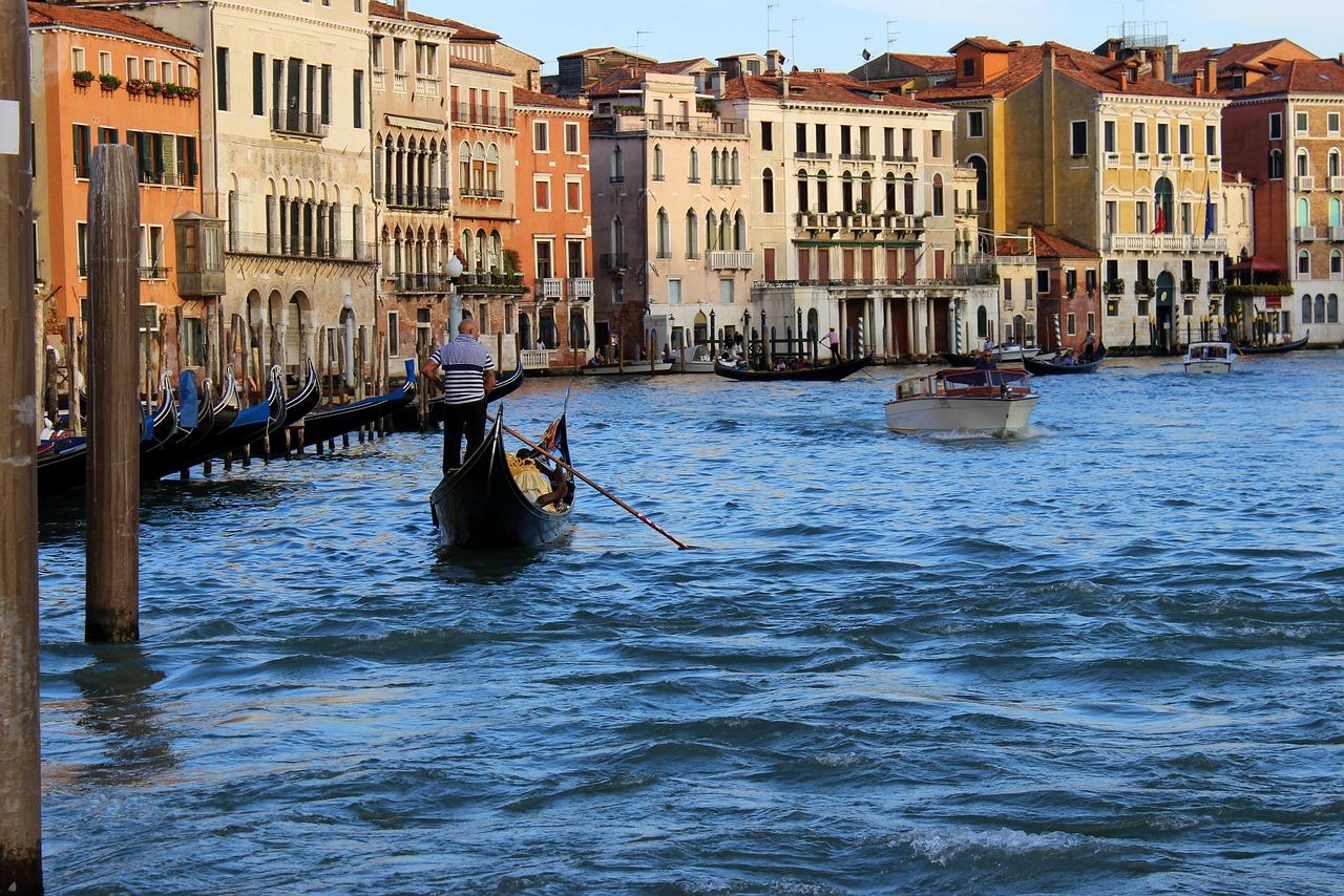 ecosistema della laguna di Venezia