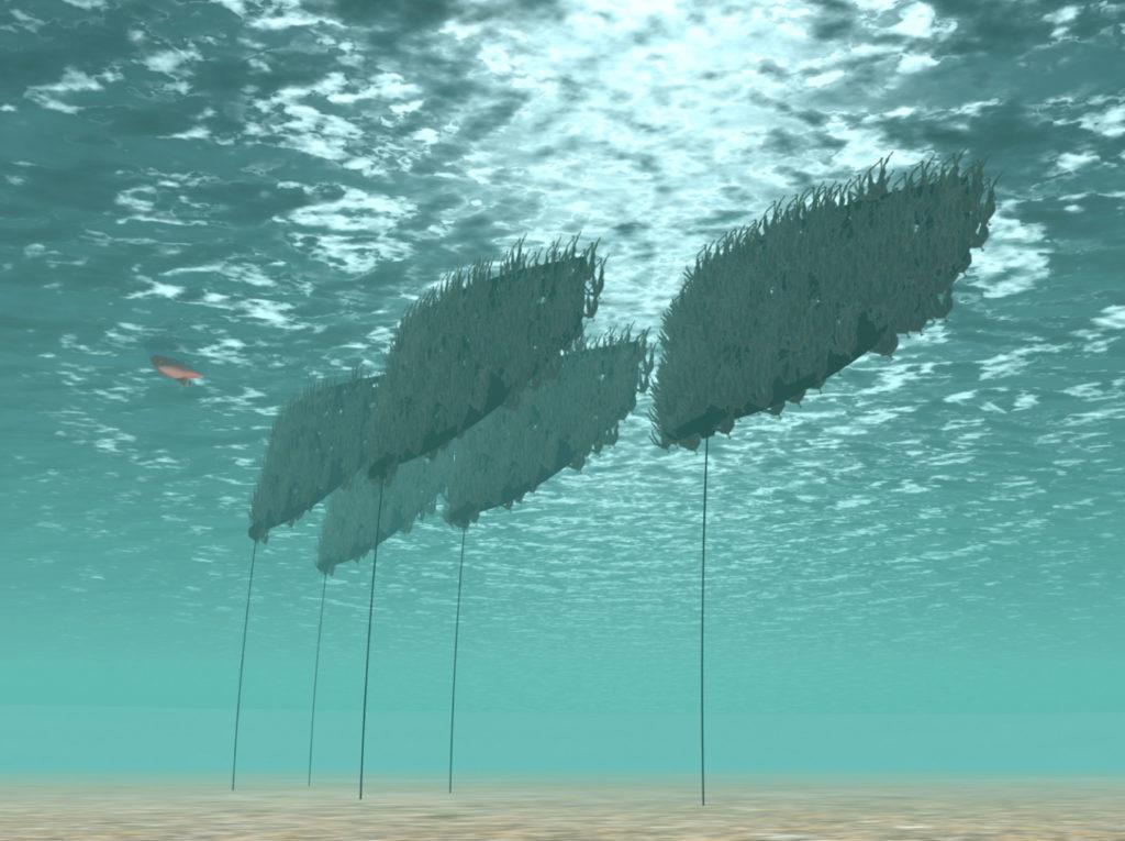 energia dalle alghe