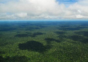 deforestazione amazzonia