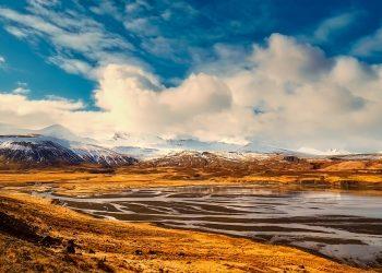 Rigenerazione delle foreste islandesi