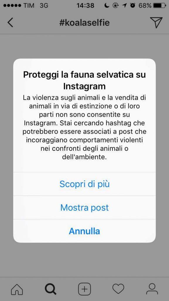 Instagram diventa animal friendly