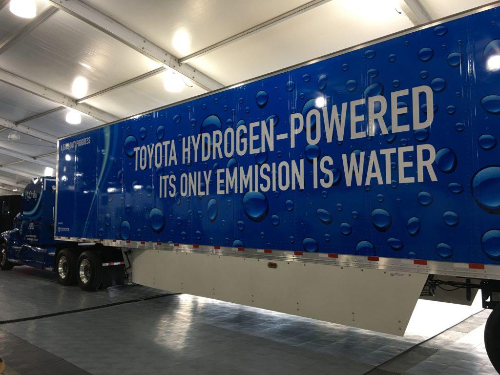 Energia dalla biomassa