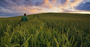 bio distretti agricoli