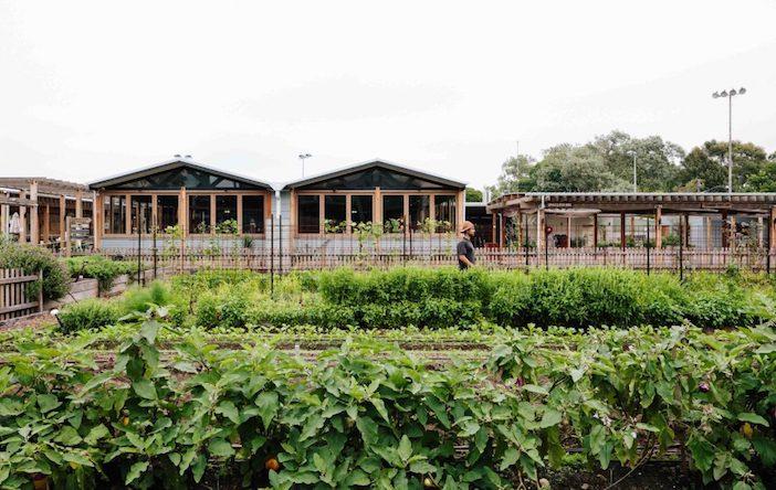 progetti di agricoltura urbana