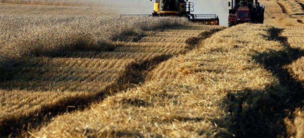Banca nazionale delle terre agricole