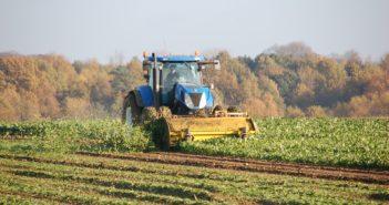 Sequestro del carbonio in agricoltura (foto: www.pixabay.com)