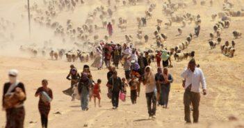 migrazioni climatiche