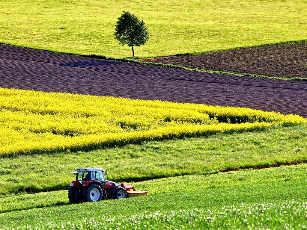 Il sequestro del carbonio in agricoltura (www.pixabay.com)