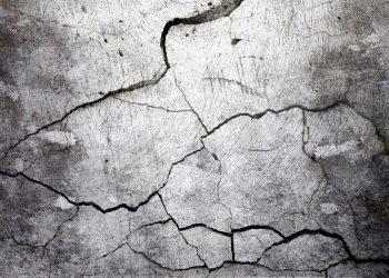 Infrastrutture sostenibili: come un fungo può riparare il calcestruzzo
