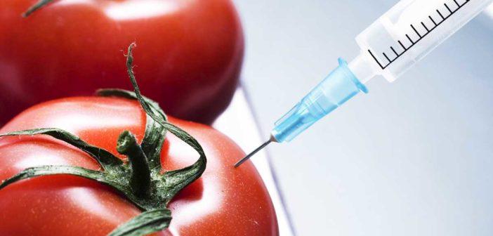 innovazioni alimentari