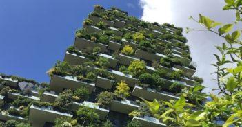 forestazione urbana