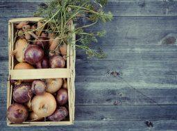 sostenibilità alimentare