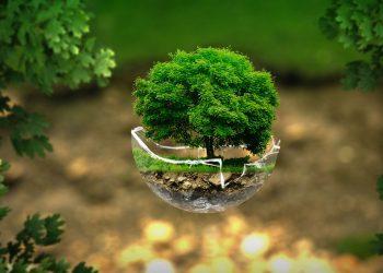 aiutare ambiente