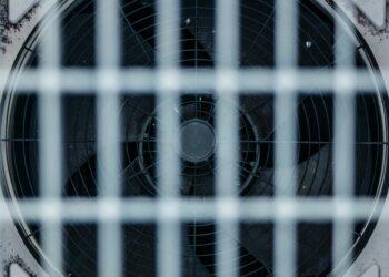 risucchiare anidride carbonica